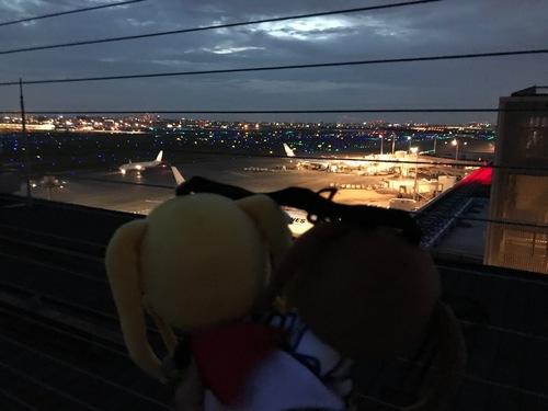2017アキバ巡り2 - 59.jpg