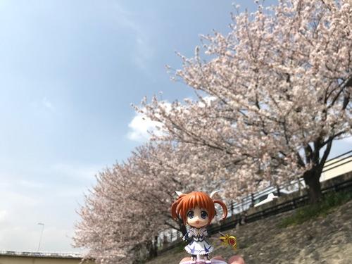 お花見 - 7.jpg