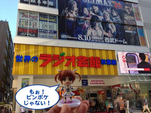 アキバ2014Day2-003.jpg