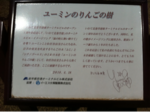 iphone/image-20110518090311.png