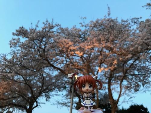 お花見 - 16.jpg