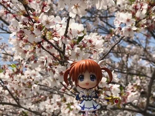 お花見 - 8.jpg