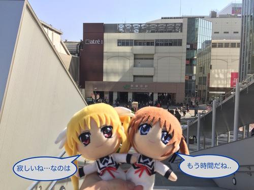 ぽちのアキバ漂流3日目-241.jpg