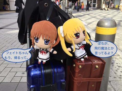 ぽちのアキバ漂流3日目-243.jpg